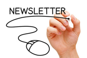 We design Mailchimp Email Newsletters and help you to manage and send to your customer database