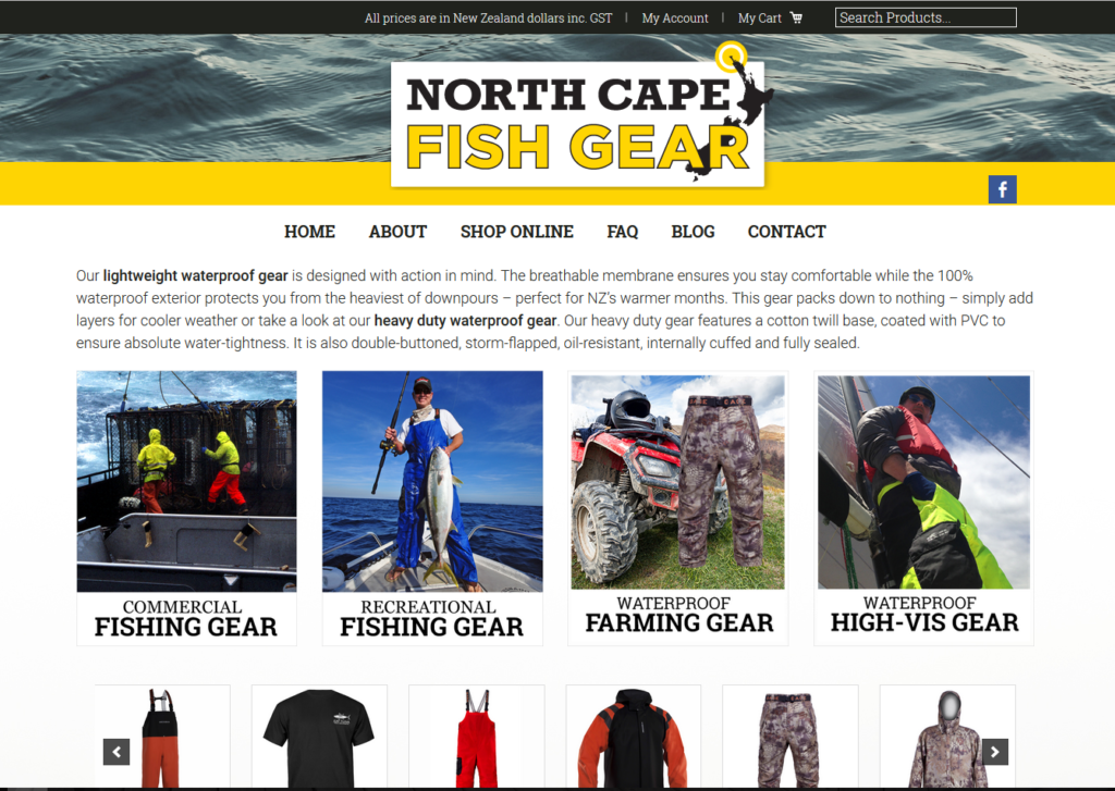 online clothing website design
