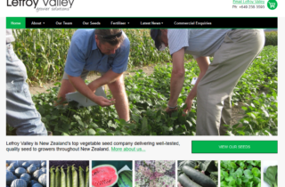 Seeds Online Shop