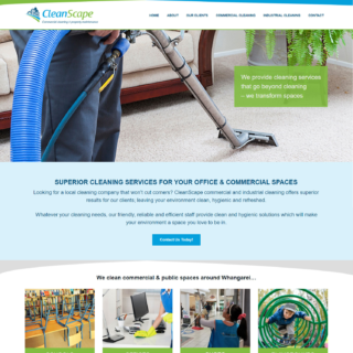 Cleaning Website