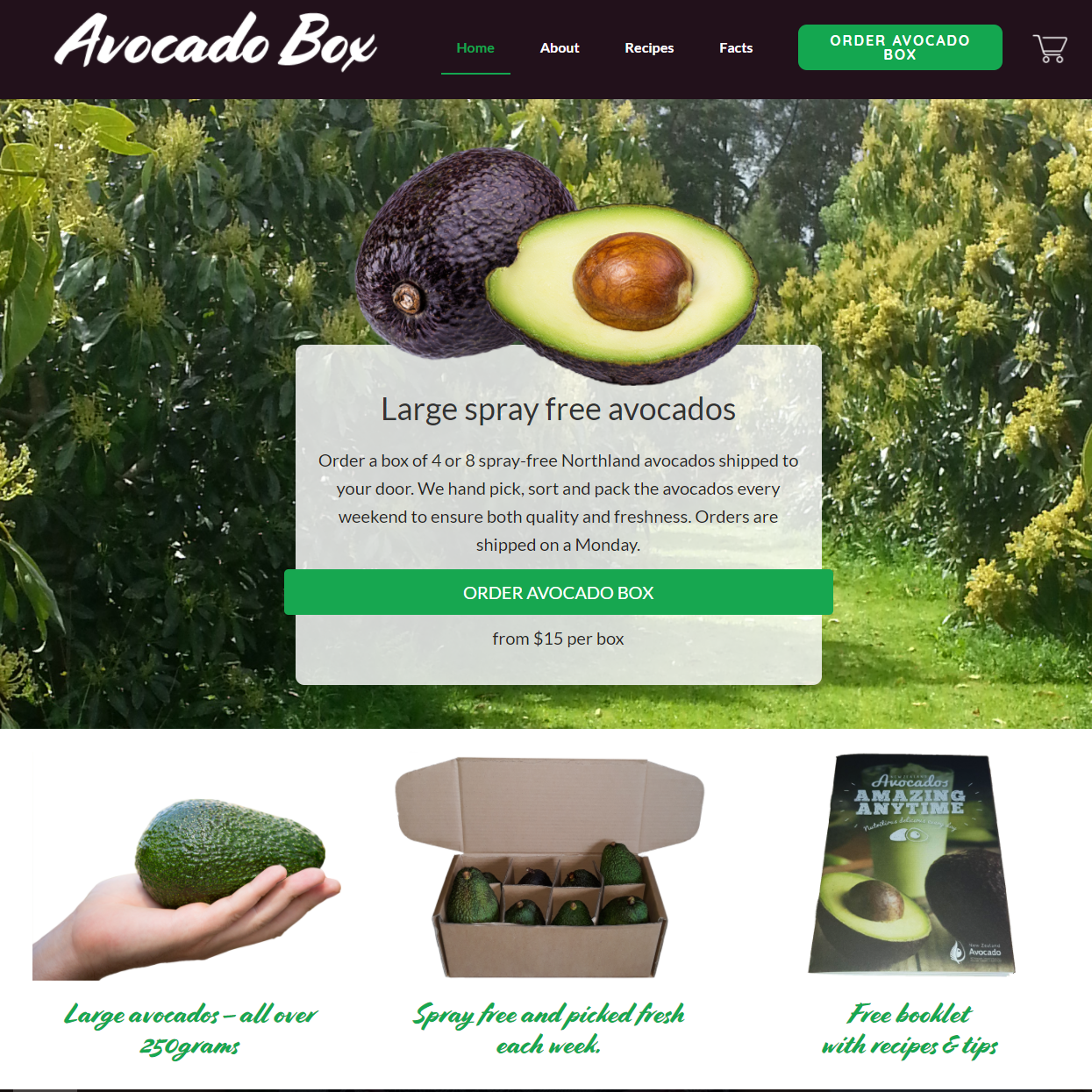 AvocadoBox Website